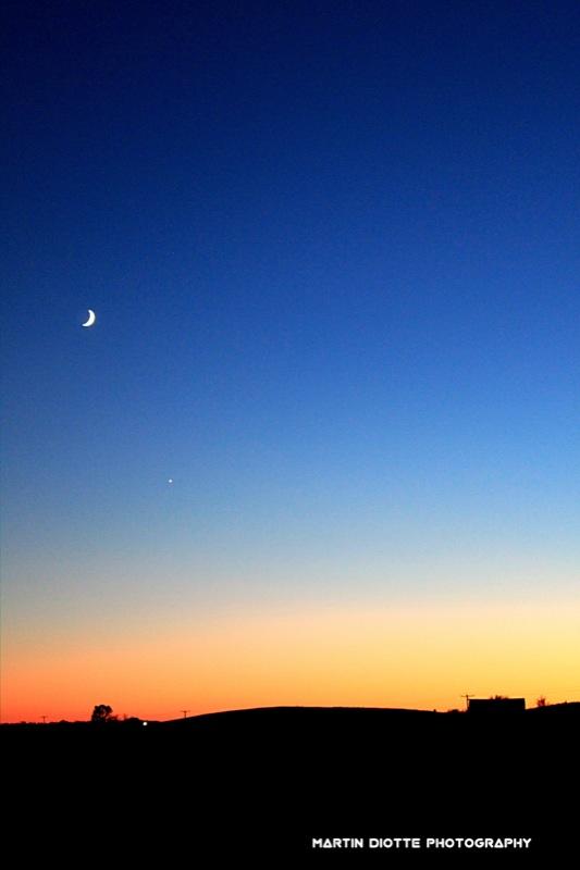 Venus Sky