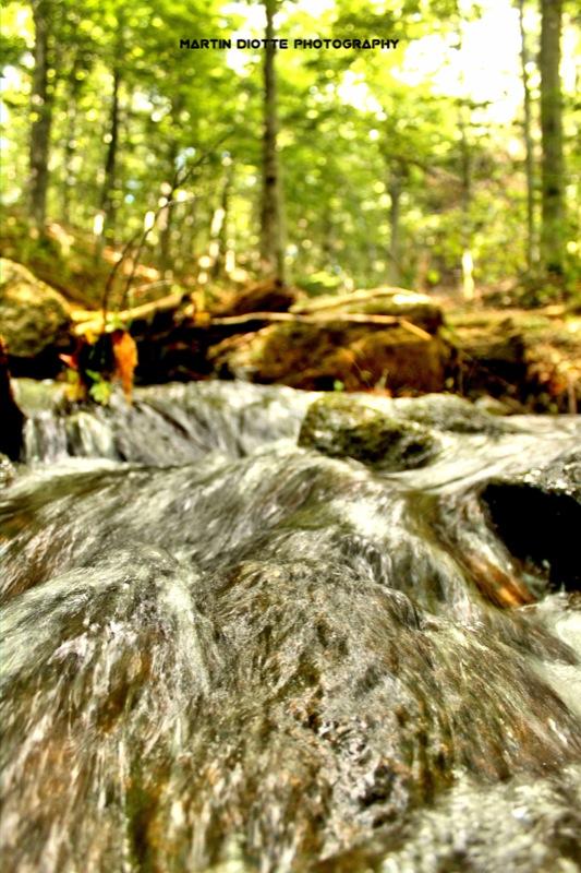 Gatineau Water